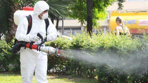 Sct Böcek İlaçlama